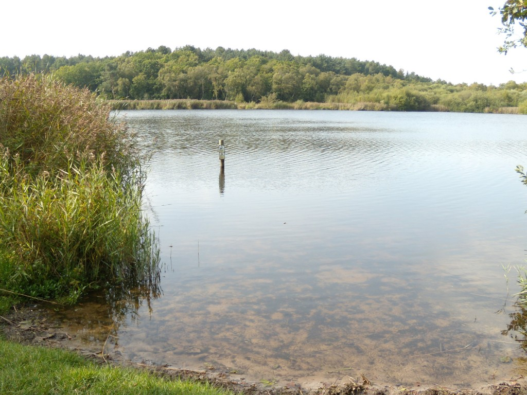 Hatchmere Lake, Cheshire Sept 2015